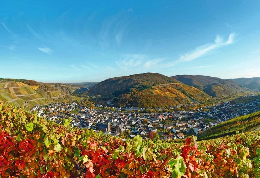 Auf dem Rotweinwanderweg erleben Sie das traumhafte Ahrtal und die ausgezeichneten Weine der Region.
