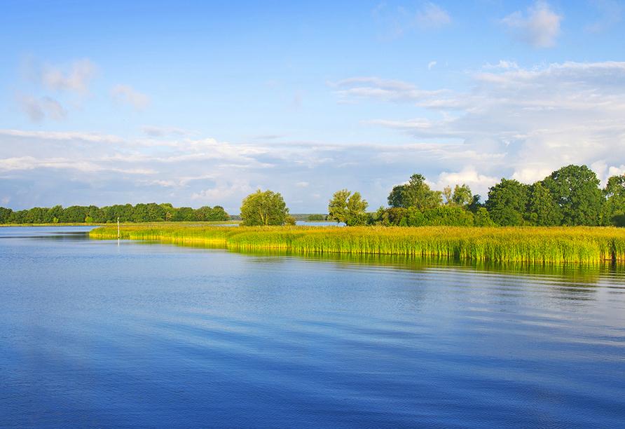 Strahlend blauer See bei Sonnenschein und mit grünen Laubbäumen am Ufer.