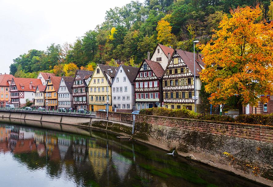 Die Fachwerkhäuser, Hermann Hesse und das Kloster Hirsau sind Aushängeschilder der schönen Stadt Calw.