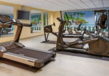 Victor's Residenz-Hotel Gera, Fitnessraum