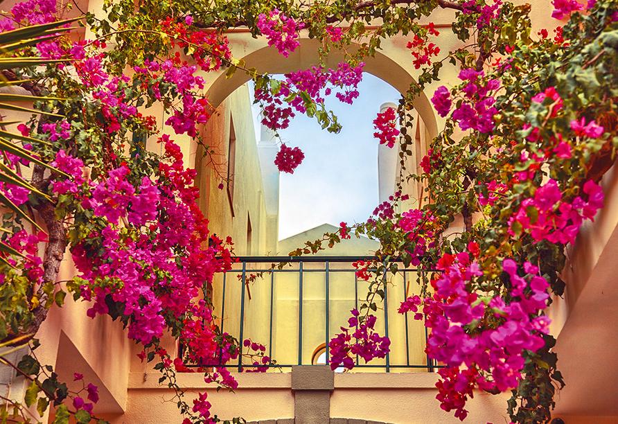 Mit leuchtenden Blumen geschmückte Gassen werden Sie in Portugal häufig sehen.