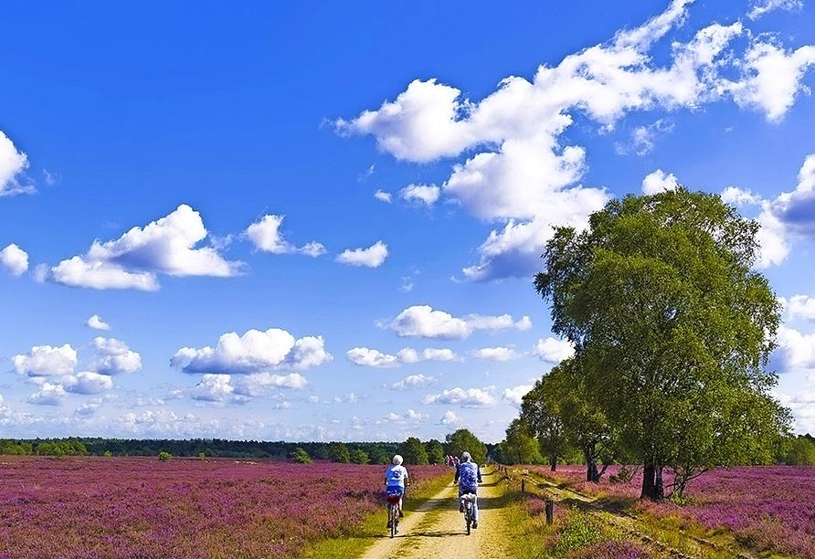 Erkunden SIe die Lüneburger Heide auf dem Rad.