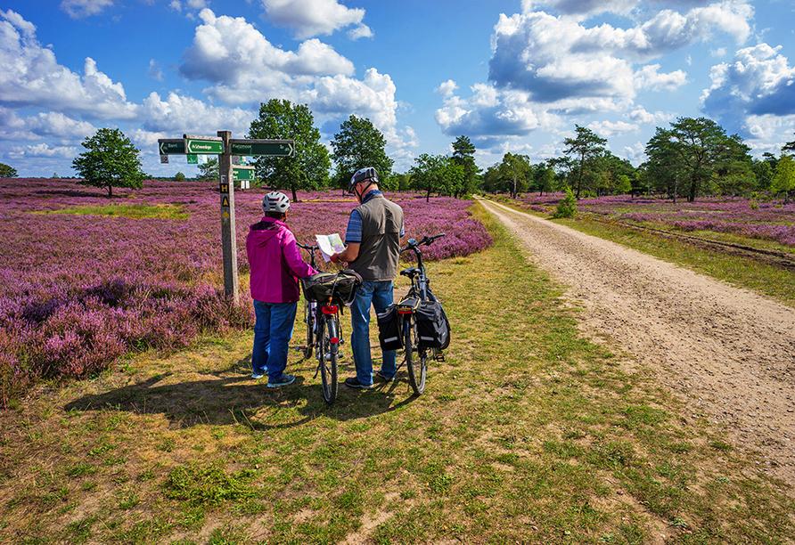 Fahrradfahrer auf dem Heidschnuckenweg in der Lüneburger Heide.