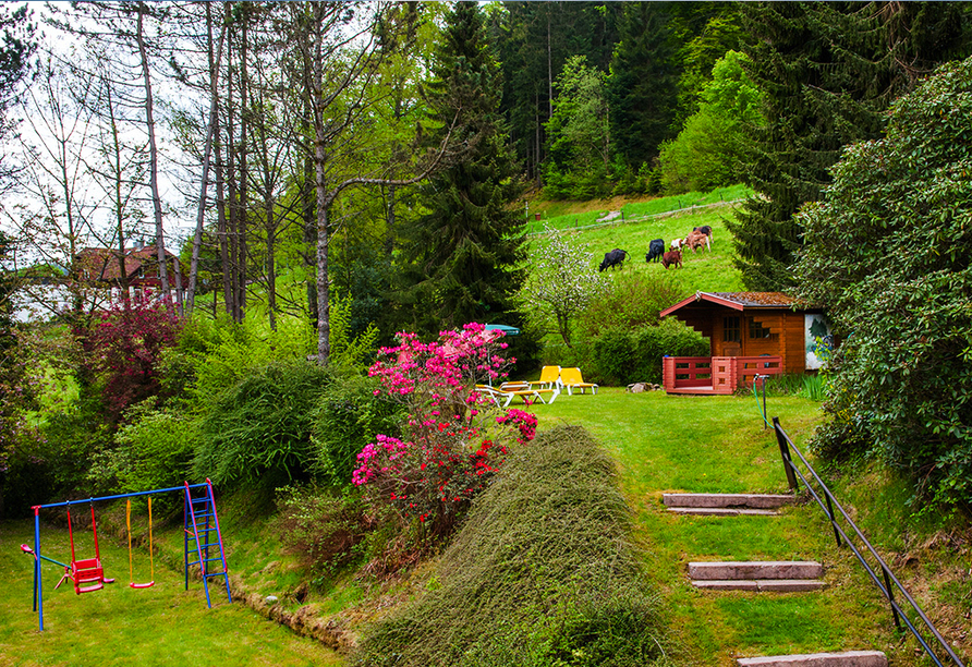 Genießen Sie von der Waldliegewiese aus die sattgrüne Umgebung.
