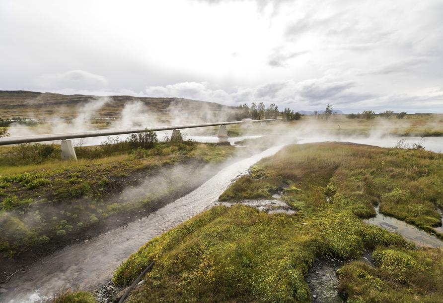 Das Wasser der Deildartunguhver Heißwasserquellen ist konstante 97 Grad warm.