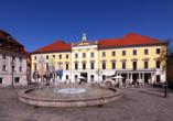 Das Stadttheater am Bismarckplatz befindet sich in einm schönen Bau nach klassizistischem Vorbild.