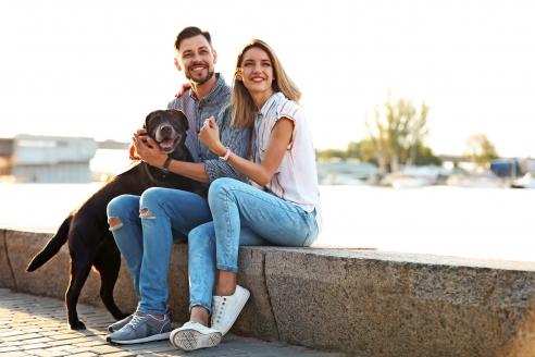 MS Rigoletto, Paar mit Hund