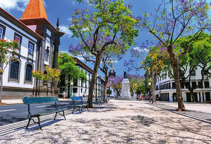 Schlendern Sie in aller Ruhe durch Ihren schönen Urlaubsort Funchal.
