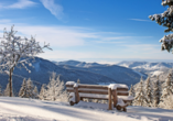 Genießen Sie traumhafte Aussicht über den Schwarzwald im Winter!