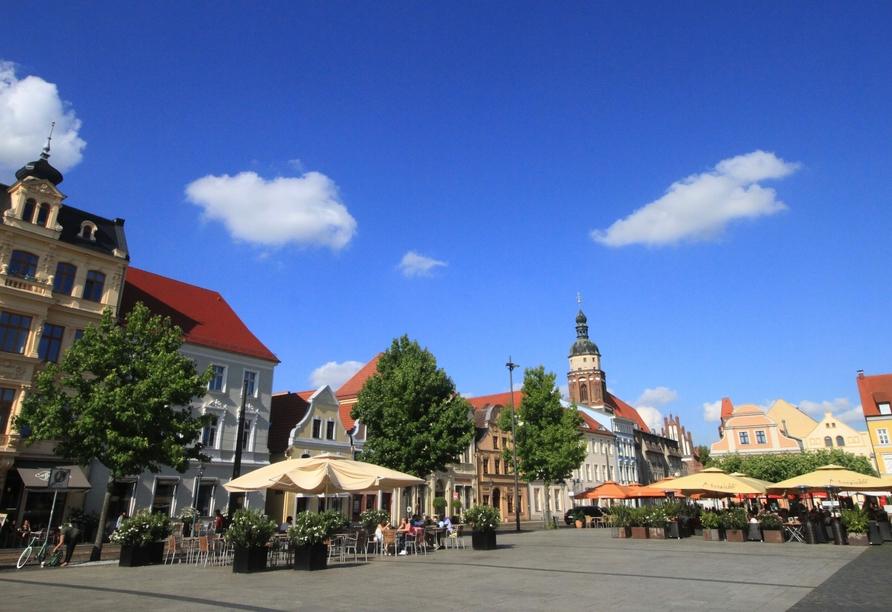 Besuchen Sie die rund 28 km entfernte Stadt Cottbus.