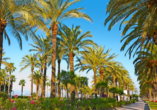 Spazieren Sie entlang der von Palmen gesäumten Promenade von Salou.