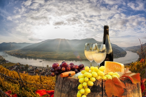 MS VistaFidelio, Essen und Landschaft Donau