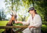 Ein Highlight sind die Ziegen, Kühe und Schafe auf dem Gelände der Ferienanlage.