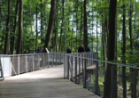 Begeben Sie sicch auf dem Höhenpfad Manitoba im Osnabrücker Zoo auf eine Reise durch Nordamerika.