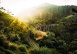 Ebenfalls eine berühmte Attraktion auf der Insel ist die Viaduktbrücke, besser bekannt als Nine Arches Bridge, im Gebirge von Sri Lanka.
