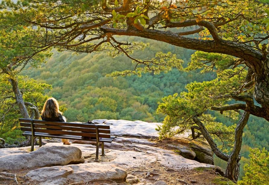 Traumhafte Momente erwarten Sie im Pfälzerwald.