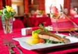 Hotel Storck in Bad Laer, regionale Küche