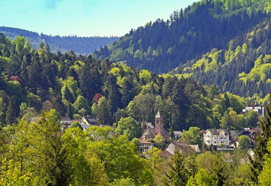 Rund um Bald Herrenalb können Sie die schöne Natur und frische Schwarzwaldluft genießen.