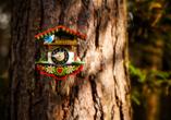 Entdecken Sie den Schwarzwald mit seinen Traditionen.