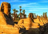 Entdeckerreise Nil, Sphingen Allee, Luxor