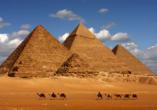 Entdeckerreise Nil, Pyramide von Gizeh