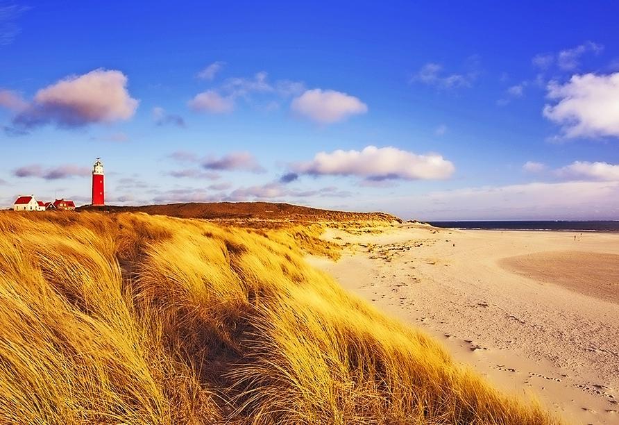 Ein Ausflug zur Insel Texel lohnt sich!