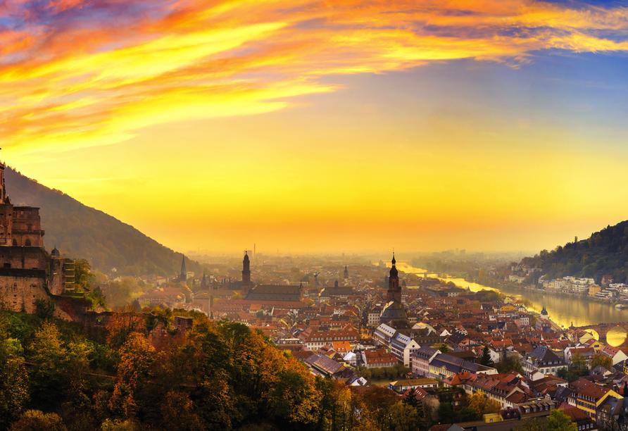In Heidelberg am Neckar befindet sich die älteste Universität Deutschlands.