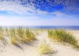 Die Dünen am Kijkduin-Strand laden zum Verweilen ein.