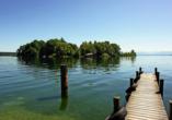 Erfrischen Sie sich im kristallklaren Starnberger See.