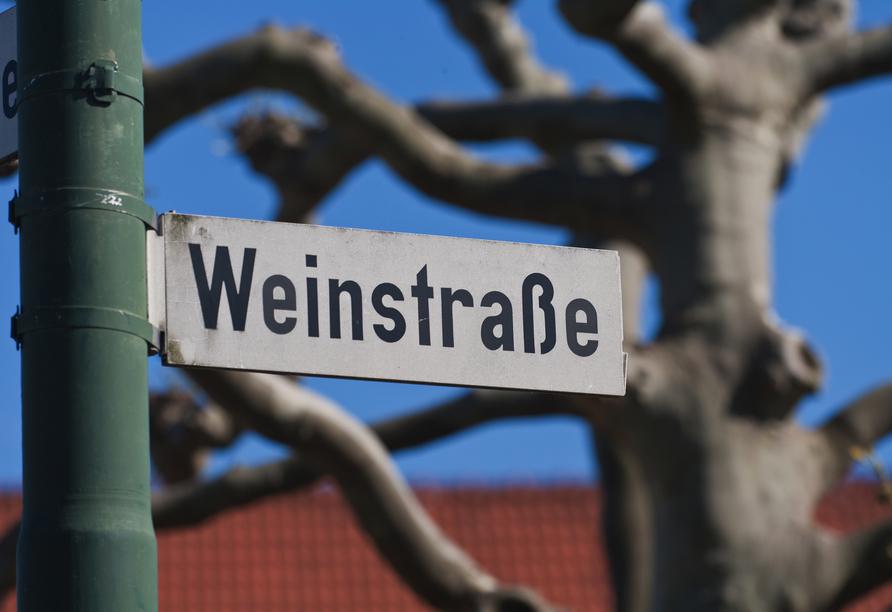 Willkommen an der Deutschen Weinstraße!