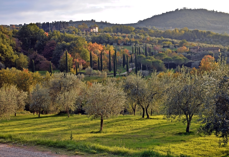 Rundreise Italien Toskana, Landschaft