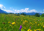 Das Bayerische Alpenvorland ist traumhaft schön.