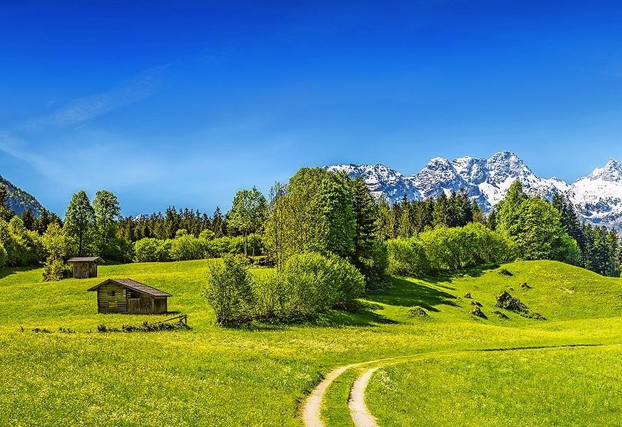 Die Landschaft im Salzburger Land wird Sie begeistern.