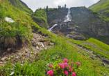 Hotel Resort Alpenrose, idyllisches Lechtal