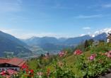 Hotel Habhof in Mösern bei Seefeld in Tirol, Ausblick Hotel