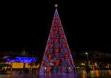 Rocamar Lido Resorts in Caniço, Funchal Weihnachtsbaum