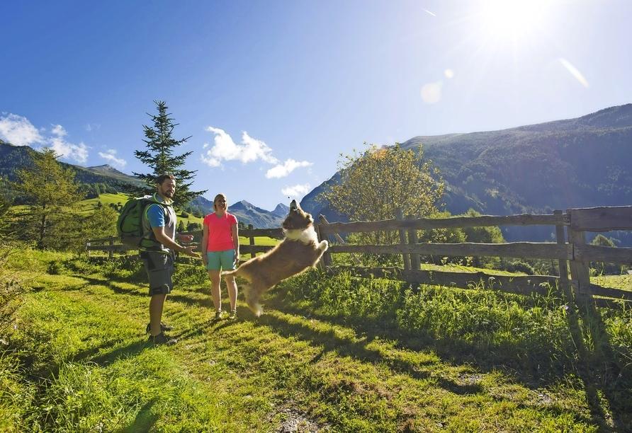 Hotel Basekamp Katschberg, Wandern mit Hund