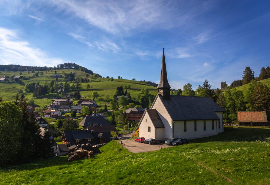 Der Erlebnis-Rundweg Muggenbrunn lässt Sie die herrliche Natur des Schwarzwalds erleben.
