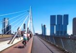 MS Alina, Rotterdam