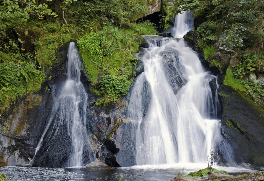 Die nicht weit enternten Triberger Wasserfälle gehören zu den höchsten Wasserfällen Deutschlands.
