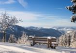 Der Schwarzwald im Winter ist traumhaft schön.