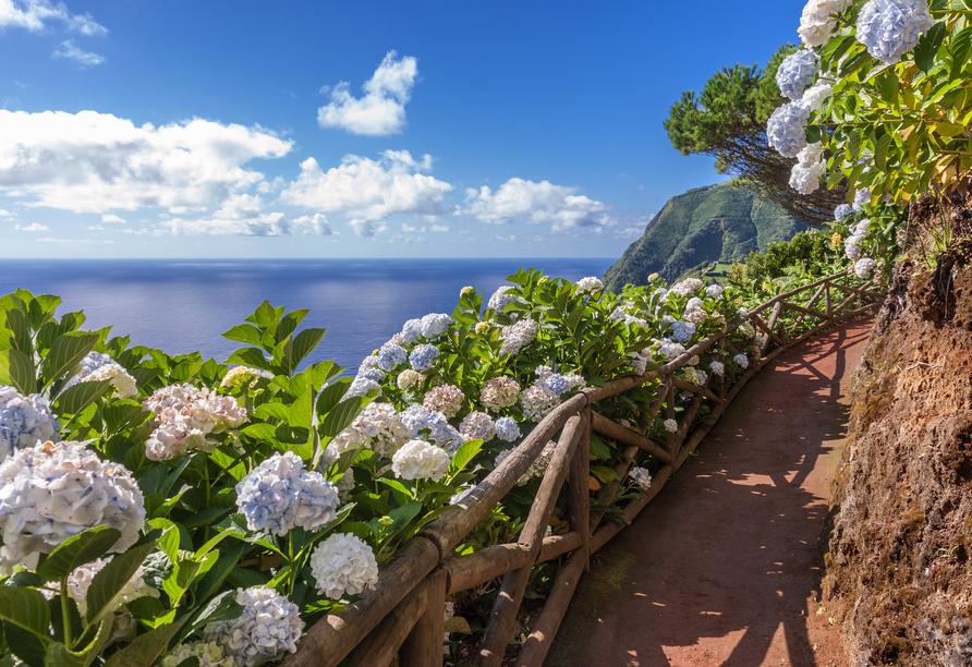 Lassen Sie sich von der wunderschönen Natur in den Bann ziehen.
