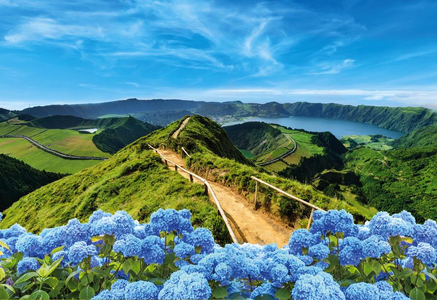 Das Blau der Hortensien und Rhododendren passt hervorragend zu dem satten Grün der Landschaft.