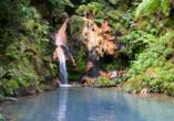 Die Caldeira Velha ist ein Naturschutzgebiet mit Naturschwimmbecken und eisenhaltigem Wasserfall, in dem man baden kann.
