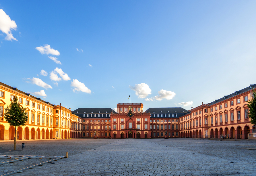Auch das Mannheimer Schloss ist äußerst beeindruckend.