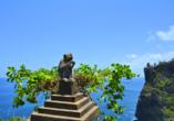 Die Anlage des Uluwatu Tempels beheimatet die typisch balinesischen Affen.