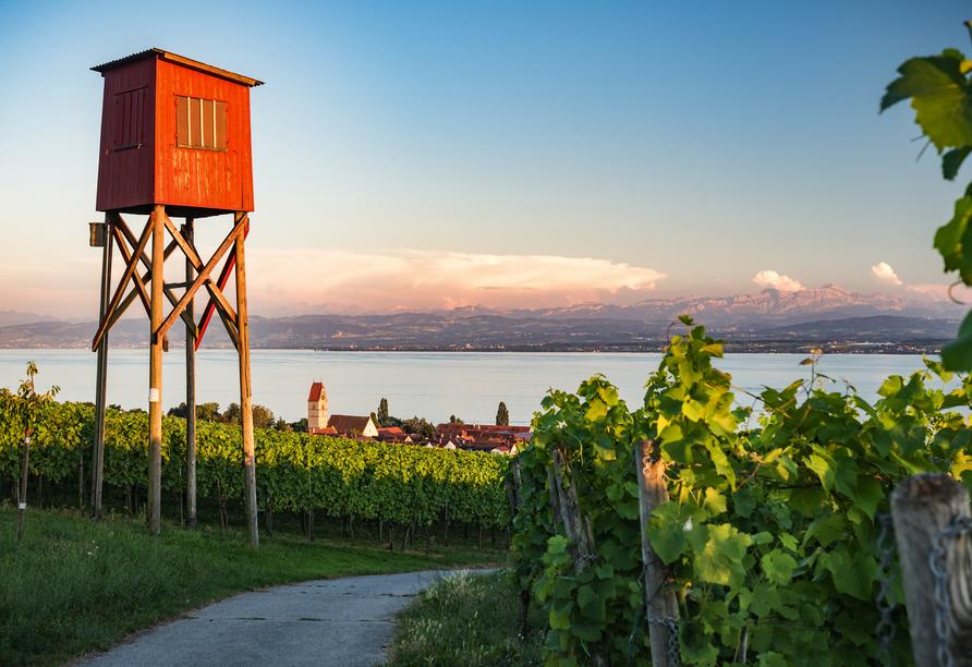 Freuen Sie sich auf einen traumhaften Alpenblick in Hagnau am Bodensee.