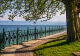Der traumhafte Bodensee bei Friedrichshafen