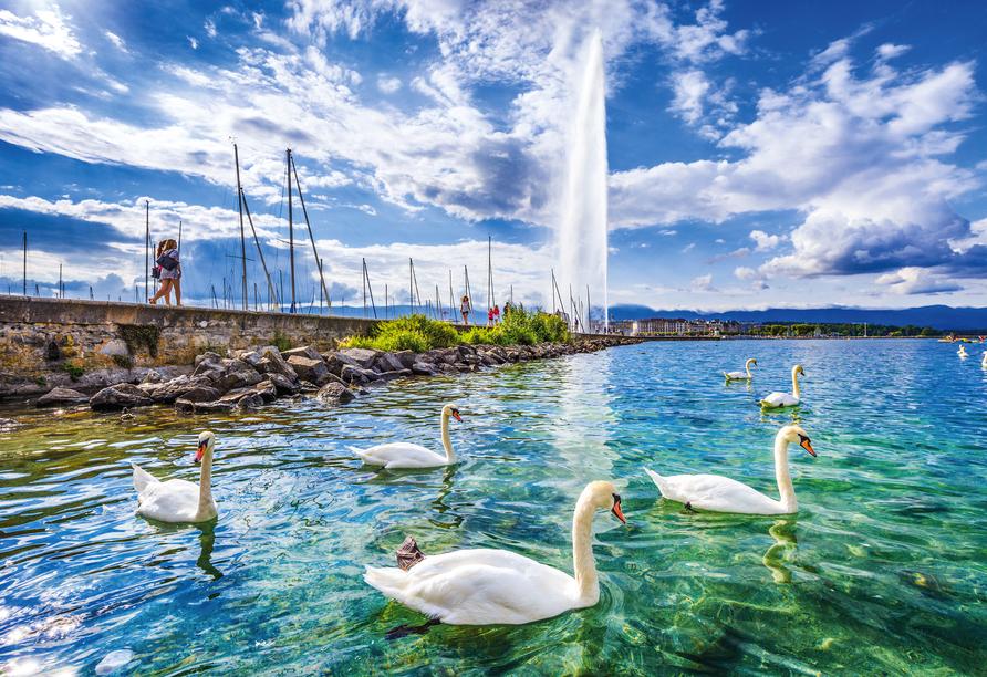 8-tägige Autorundreise Alpenrundfahrt Schweiz  -Italien - Frankreich, Genfer See