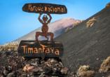 Unternehmen Sie einen Ausflug in den Nationalpark Timanfaya im Westen der Insel.